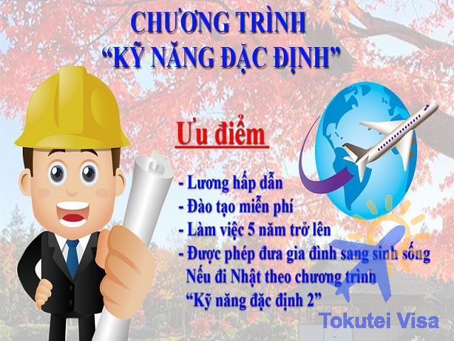 hinh-1-dieu-kien-xin-visa-ky-nang-dac-dinh