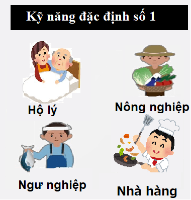 visa-ky-nang-dac-dinh-loai-1