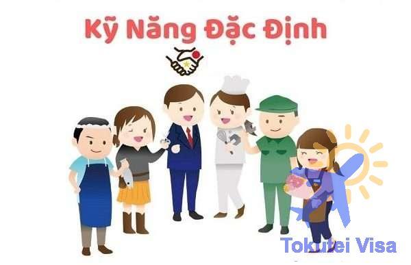 don-hang-ky-nang-dac-dinh-la-gi-1