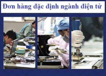 don-hang-ky-nang-dac-dinh-nganh-dien-tu