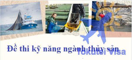 de-thi-ky-nang-nganh-thuy-san