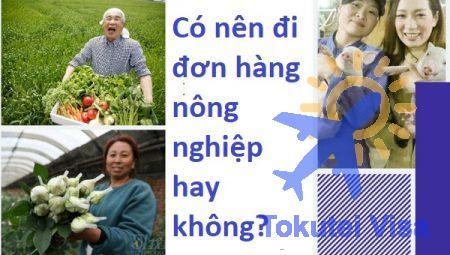 co-nen-di-don-hang-nong-nghiep-hay-khong