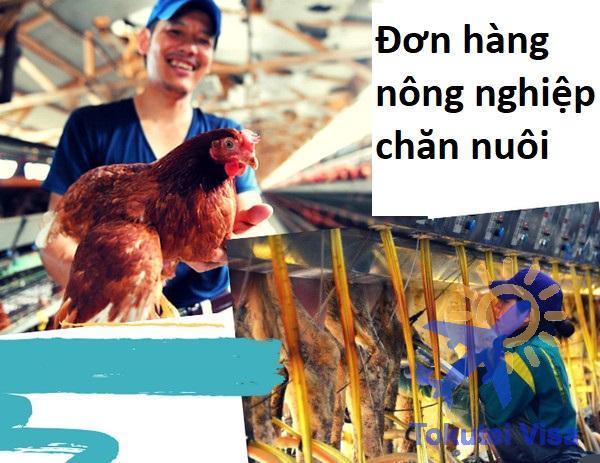 don-hang-nong-nghiep-chan-nuoi
