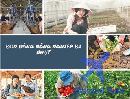 cac-loai-don-hang-nong-nghiep