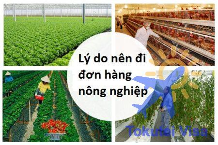ly-do-nen-di-don-hang-nong-nghiep